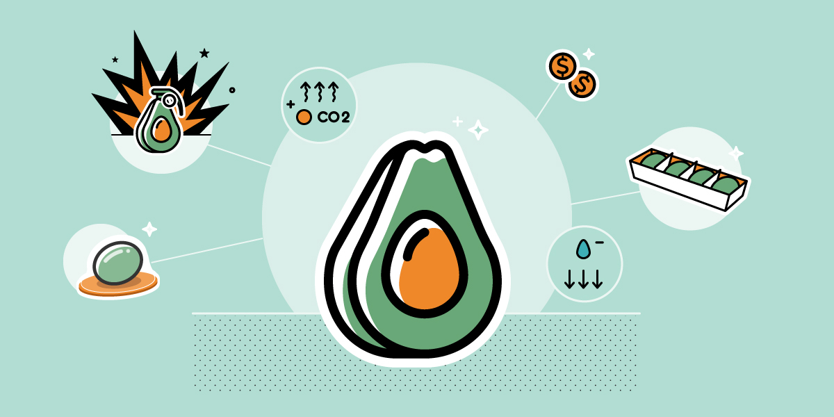 Innovations to solve the key challenge in avocado production